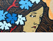 Vlierboomplein murals